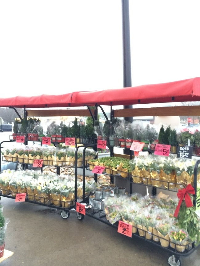 traderjoes外に花が売っている