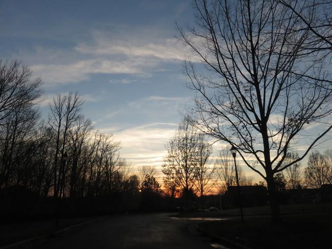 アメリカの空(木と夕日)