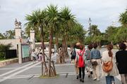 水族館への歩き道