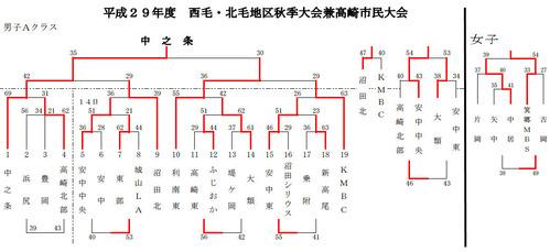 20171016miniseihokumousyuukifinal