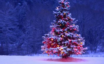 【12/24 イブ】クリスマスにオススメのゲームってある?