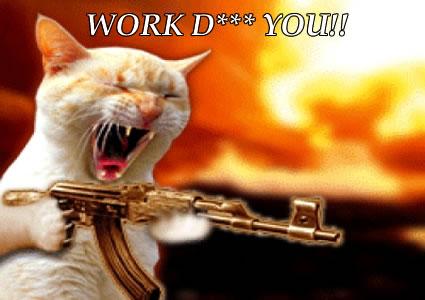 kitty-has-it-hard