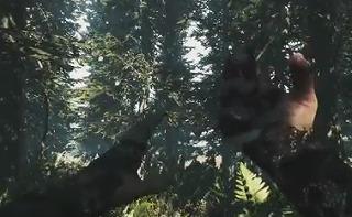 墜落した森で食人族と戦う高評価サバイバルアクション「The Forest」がPS4で発売決定!!