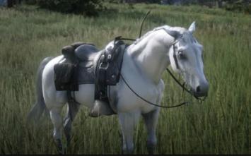 """【衝撃】RDR2、馬の名前に""""任天堂""""を使用できない"""