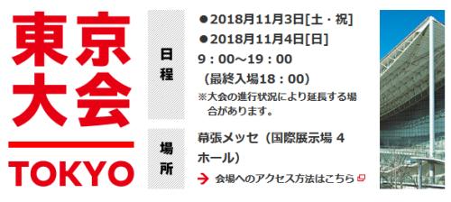 Nintendo Live 2018 (3)