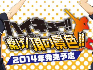 アニメで人気の「ハイキュー!!」が3DSでゲーム化! 2014年発売、ティザーサイトオープン!!