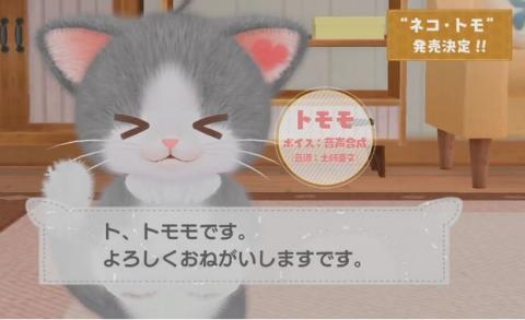 ネコ・トモ (2)