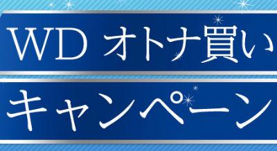 【お得(?)速報】 ウェスタンデジタルのHDDを100TBぶん買うとPS4がタダでもらえるぞ!!!