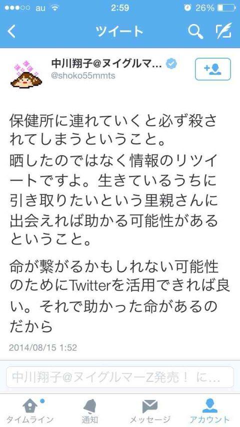 しょこたん (2)