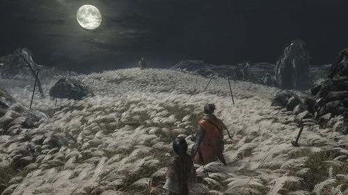 【4亀】『SEKIRO(セキロ)』と『ダークソウル』の10の違い
