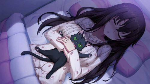 ノラと皇女と野良猫ハート (3)