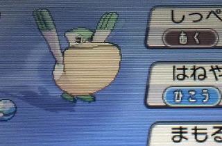 3DS「ポケモン オメガルビー/アルファサファイア」 攻略まとめ! キンセツ2階 ジュエル 孵化パワー アメタマ しあわせタマゴ