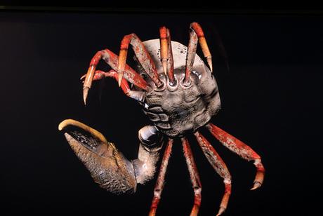 【未来】ディスプレイから 3Dモデルが飛び出す ソニーの3Dディスプレイが超凄いと話題に!!