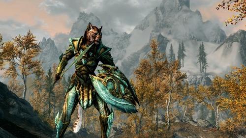 The Elder Scrolls V Skyrim (7)