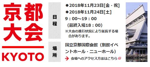 Nintendo Live 2018 (4)