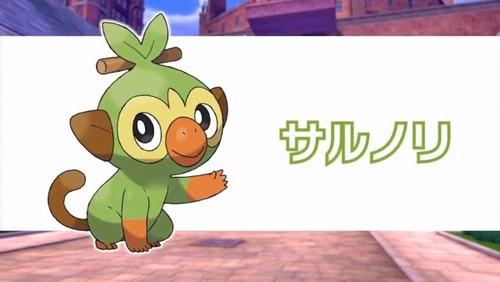pokemonsords-shiled (11)
