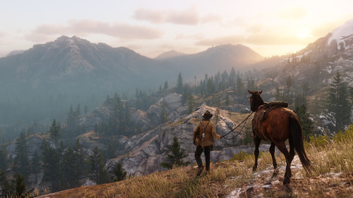 Red Dead Redemption 2 (2)