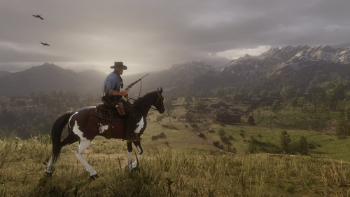 Red Dead Redemption 2 (21)