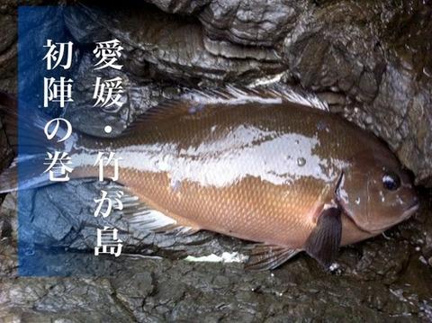 2012.3.11 愛媛