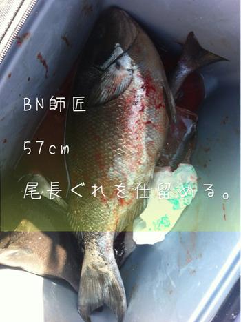 2012.4.6 姫島に行く