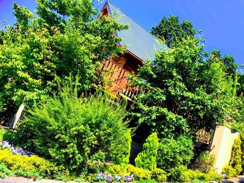 ログハウスアモーレ30年6月新規バルコニー写真10