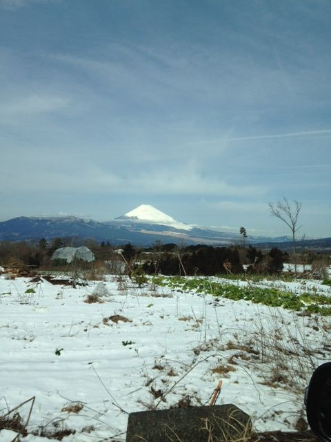 雪景色0301