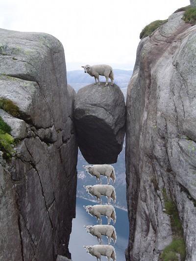 画像加工出来る人、羊さんを助けて-024
