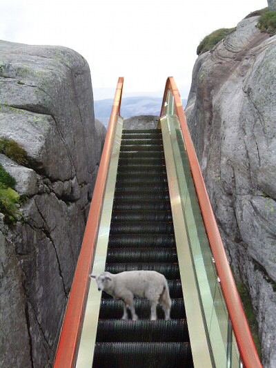 画像加工出来る人、羊さんを助けて-109