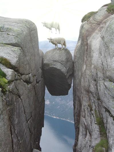 画像加工出来る人、羊さんを助けて-070