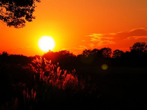 夏の終わりを感じる画像貼ってけ-077_2