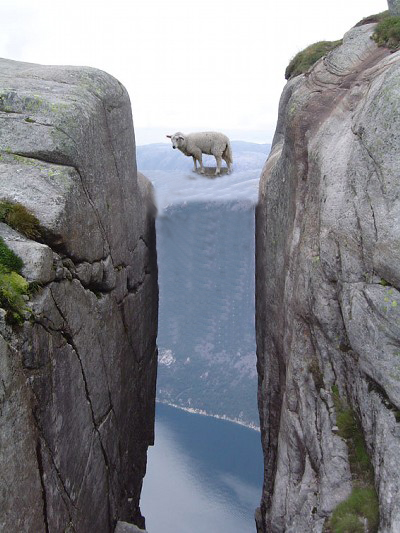 画像加工出来る人、羊さんを助けて-018