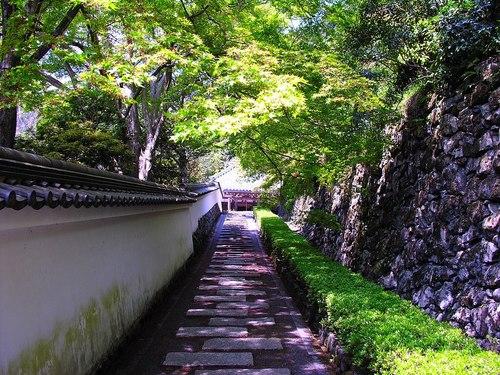 日本の綺麗な画像を貼っていこう-039_1