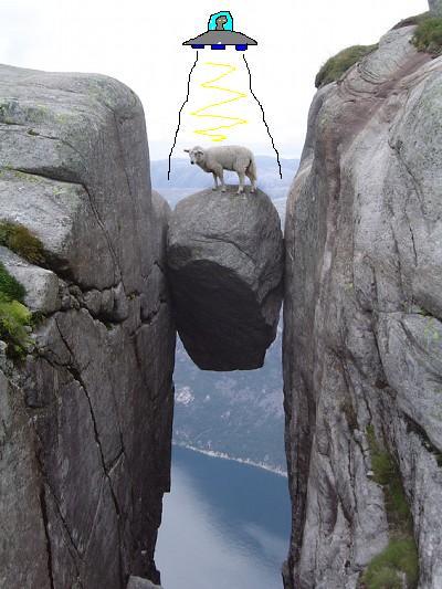 画像加工出来る人、羊さんを助けて-052