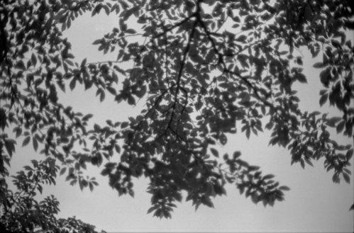 モノクロ写真を延々とうpしていくスレ-106