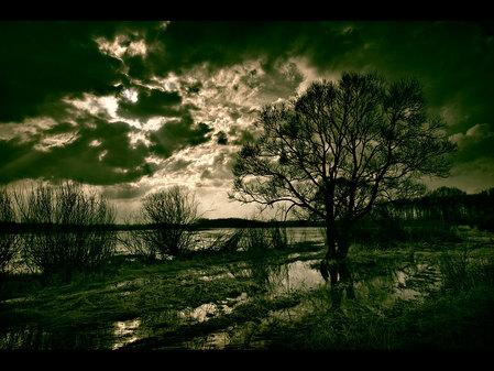 風景画像-084_1