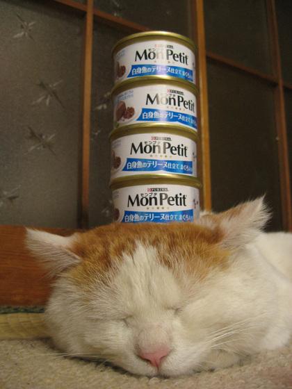 ネコの画像ください-040_1