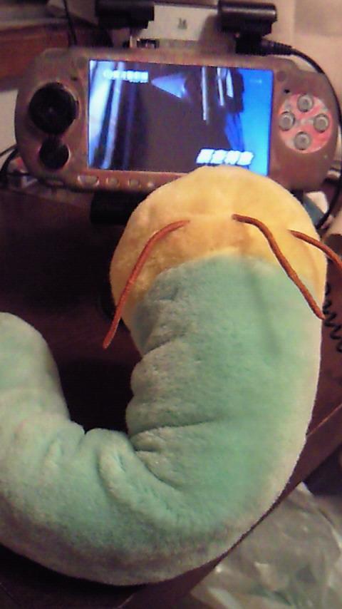 デカイ青虫が出たwwww-033