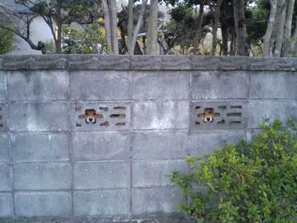 動物の笑える萌え画像-048_1