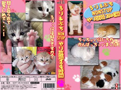 ネコの画像ください-052