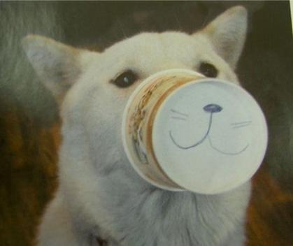 動物の笑える萌え画像-032_1