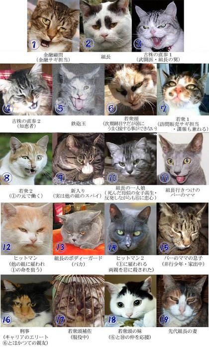 ネコの画像ください-064
