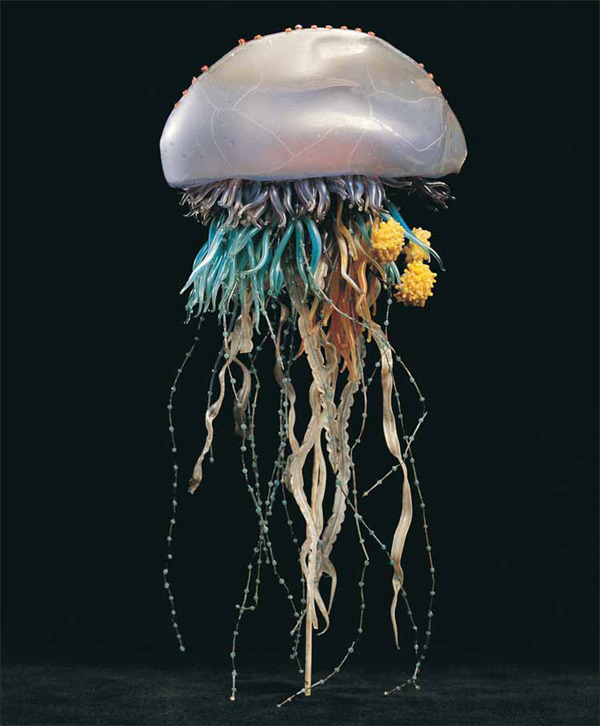 海に住む奇妙な生き物の画像-042_2