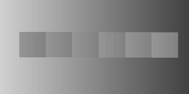 目の錯覚画像-064