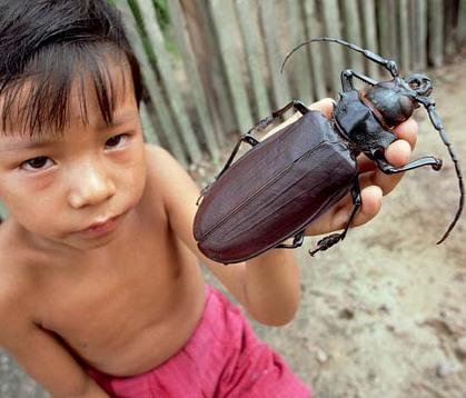 世界で一番の生き物-335_4