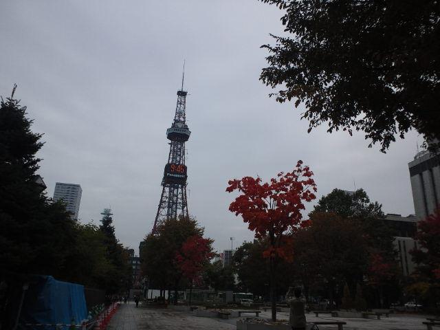カナリヤ 札幌