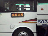 6e558303.jpg