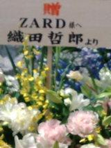 ZARD6