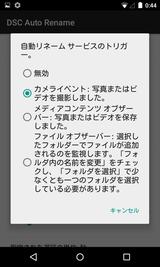 DSC Auto Rename (13)
