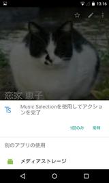 Tone Selector (Ringtone Alarm) (13)