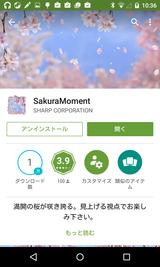 SakuraMoment (1)